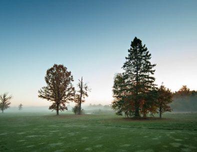 golf-wordpress-theme-5
